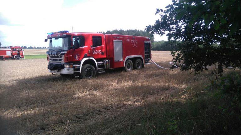 Pożar lasu w okolicach miejscowości Prochy