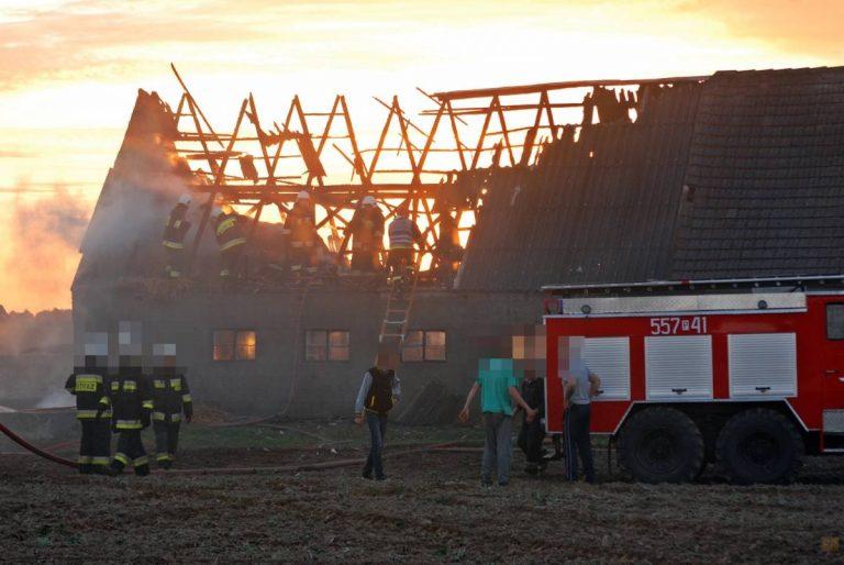 Pożar budynku gospodarczego w Luchowie