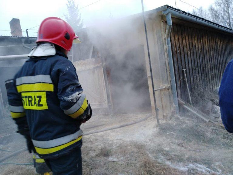 Pożar trocin w Zakrzewskiej Osadzie