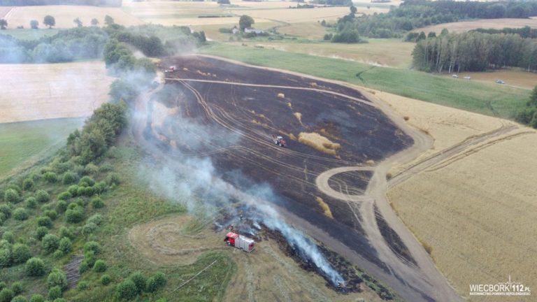 Pracowity piątek strażaków z powiatu sępoleńskiego
